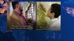 Iran's Immunity from the Coronavirus? Kiss a Holy Tomb