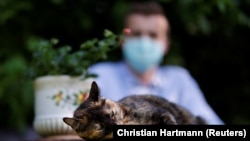 Brian, 24 year-old, suspected to have been infected by the SARS-CoV-2 poses in his garden with Papille, his 9 year-old cat who recovered after being tested positive for the virus amid the coronavirus disease (COVID-19) outbreak, in Athis-Mons, near Paris, France, May 27, 2020.