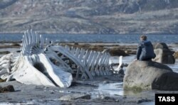 "Russia -- A scene from the Russian film ""Leviathan"" directed by Andrei Zvyagintsev"