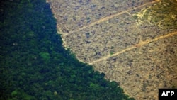 Aerial view of a deforested piece of land in the Amazon rainforest on August 23, 2019.