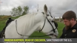 """The """"Chechen"""" Clone of Instagram: Not as Good"""