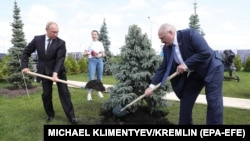 RUSSIA -- Russian President Vladimir Putin (Left) and Belarus President Alexander Lukashenko (Right) plant spruces at the Memorial to the Soviet Soldier, June 30, 2020.